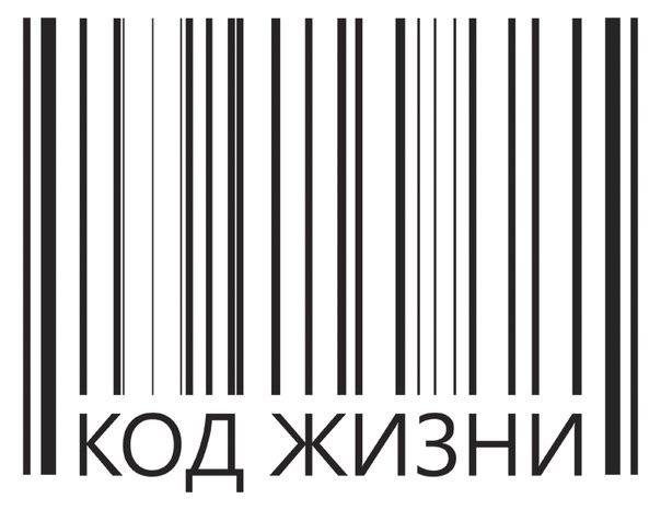 Вертекс вакансії в Санкт Петербурге